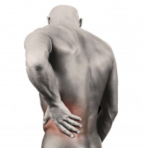 What causes back spasm